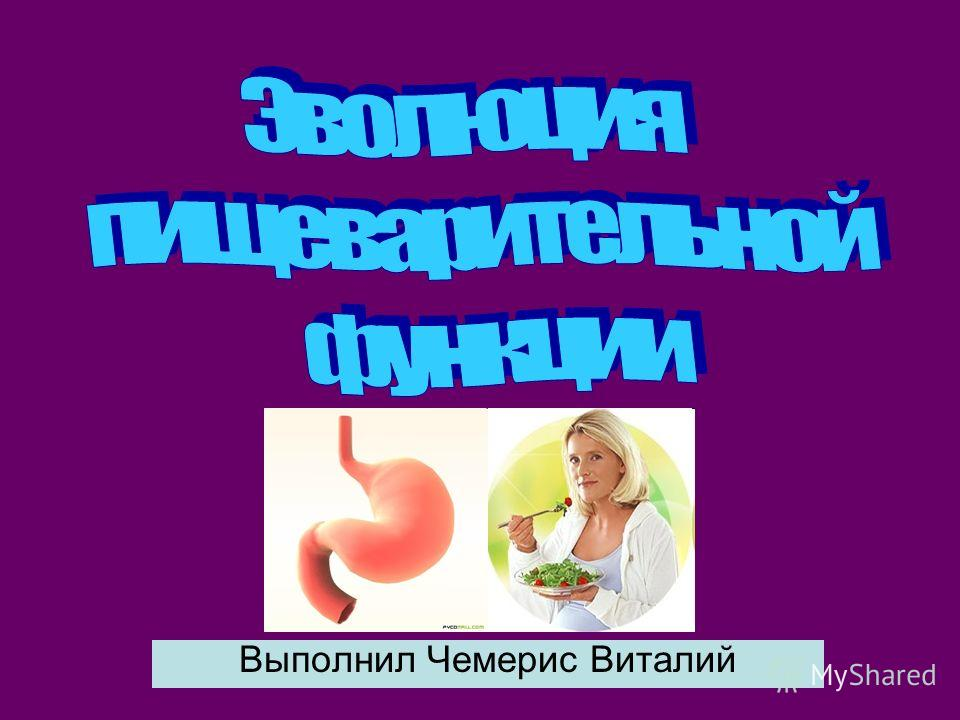 план питания для жиросжигания