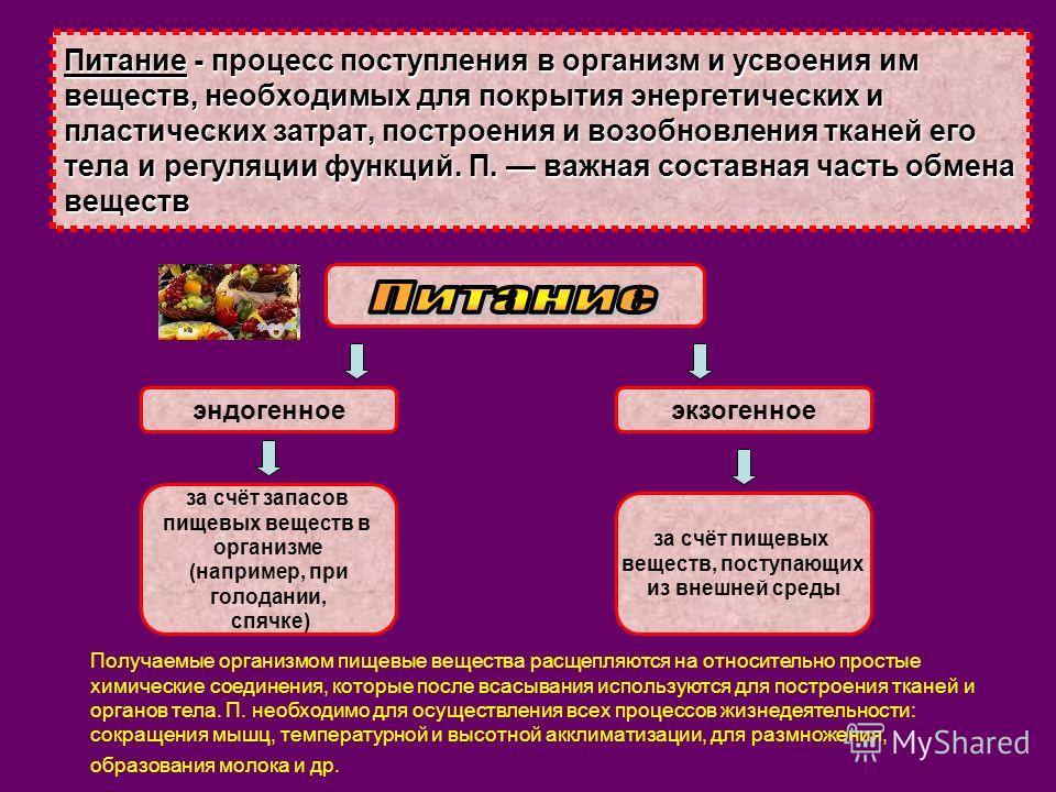 Питание - процесс поступления
