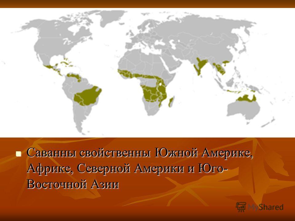 Саванны свойственны Южной Америке, Африке, Северной Америки и Юго- Восточной Азии Саванны свойственны Южной Америке, Африке, Северной Америки и Юго- Восточной Азии