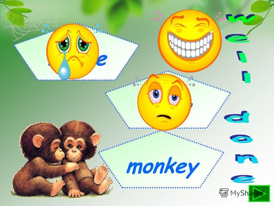 mouse bear monkey