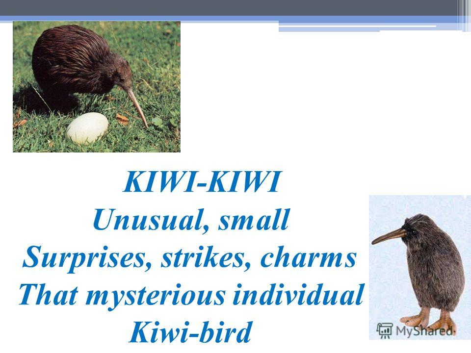 KIWI-KIWI Unusual, small Surprises, strikes, charms That mysterious individual Kiwi-bird