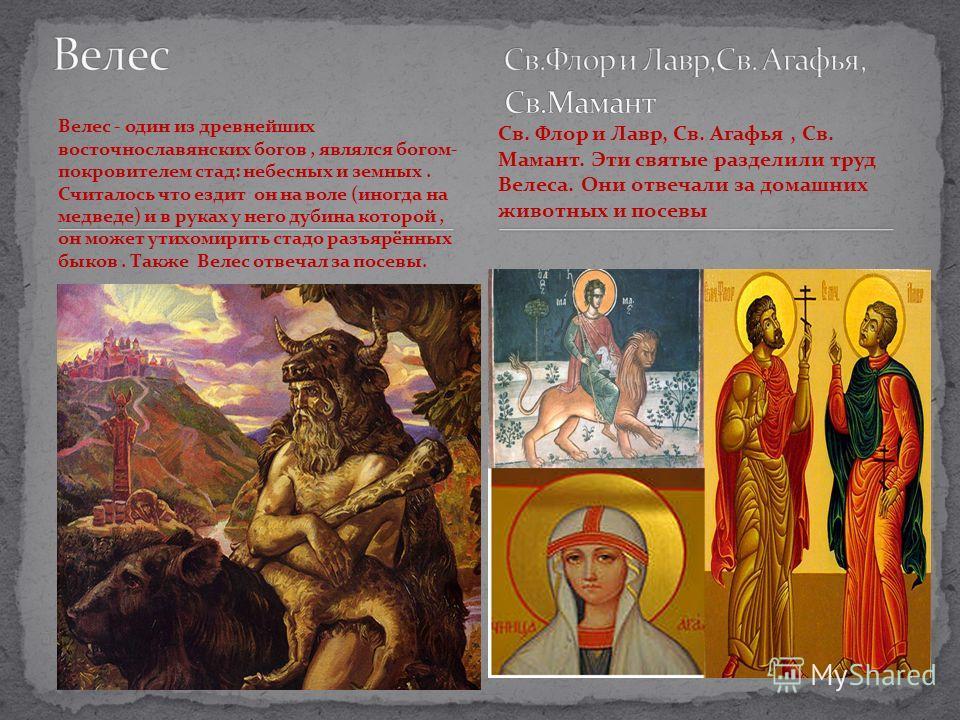 Велес - один из древнейших восточнославянских богов, являлся богом- покровителем стад: небесных и земных. Считалось что ездит он на воле (иногда на медведе) и в руках у него дубина которой, он может утихомирить стадо разъярённых быков. Также Велес от
