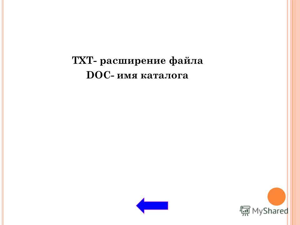 TXT- расширение файла DOC- имя каталога