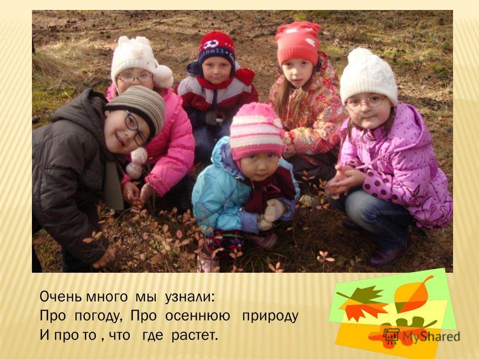 Очень много мы узнали: Про погоду, Про осеннюю природу И про то, что где растет.