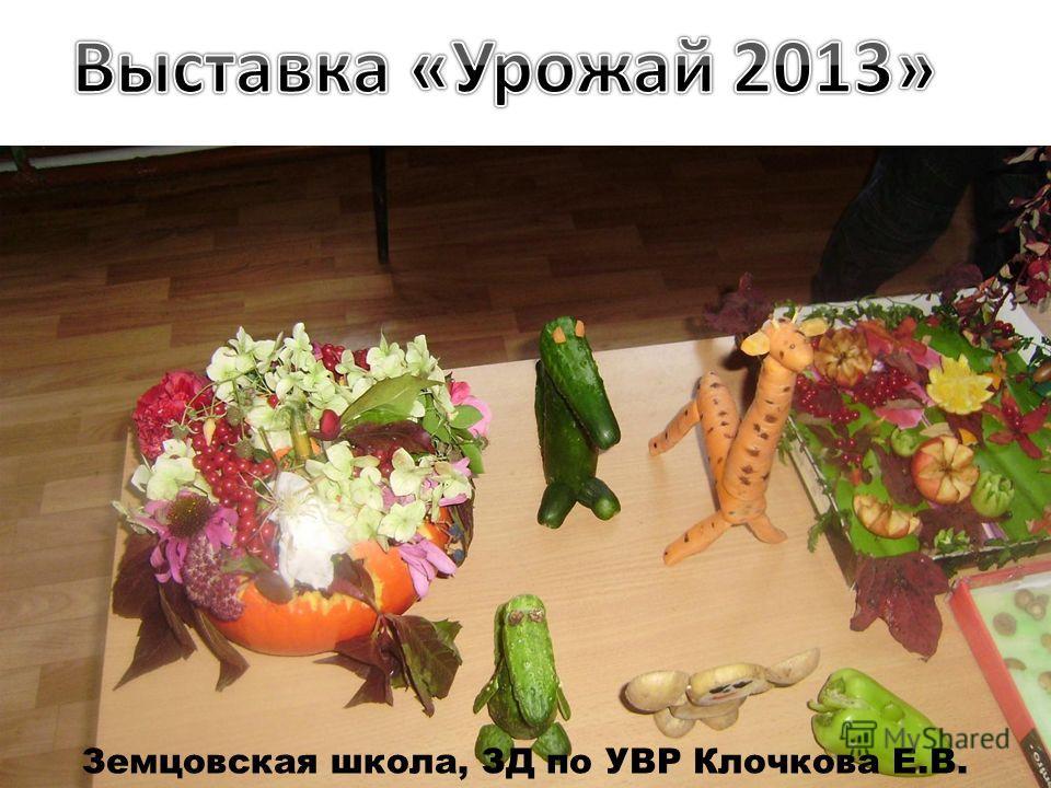 Земцовская школа, ЗД по УВР Клочкова Е.В.