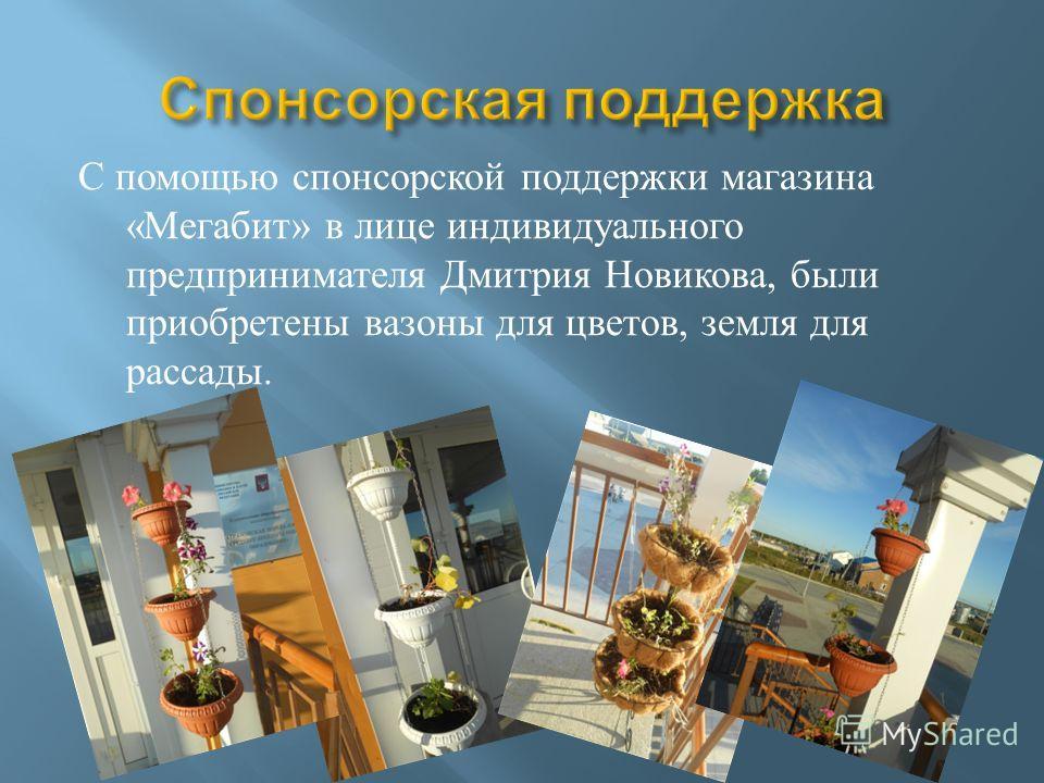 С помощью спонсорской поддержки магазина « Мегабит » в лице индивидуального предпринимателя Дмитрия Новикова, были приобретены вазоны для цветов, земля для рассады.