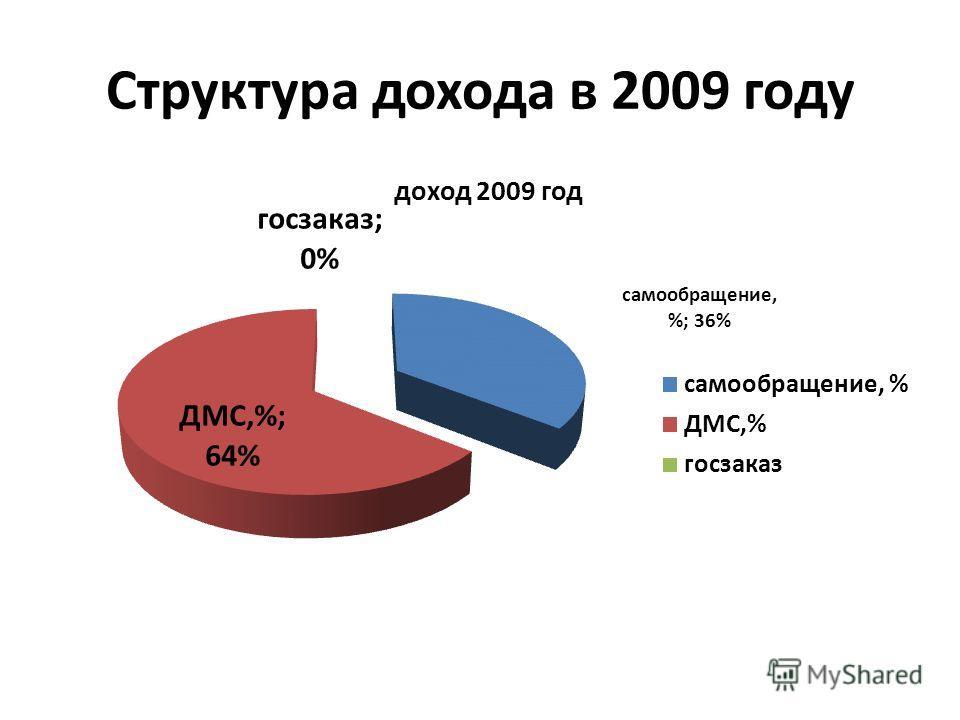 Структура дохода в 2009 году