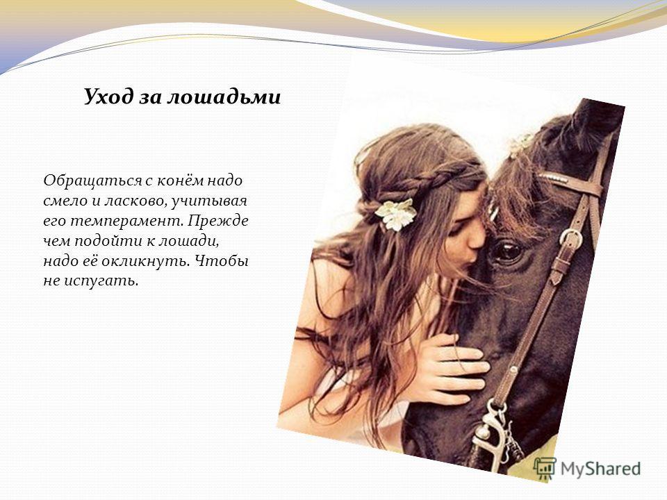 Обращаться с конём надо смело и ласково, учитывая его темперамент. Прежде чем подойти к лошади, надо её окликнуть. Чтобы не испугать. Уход за лошадьми