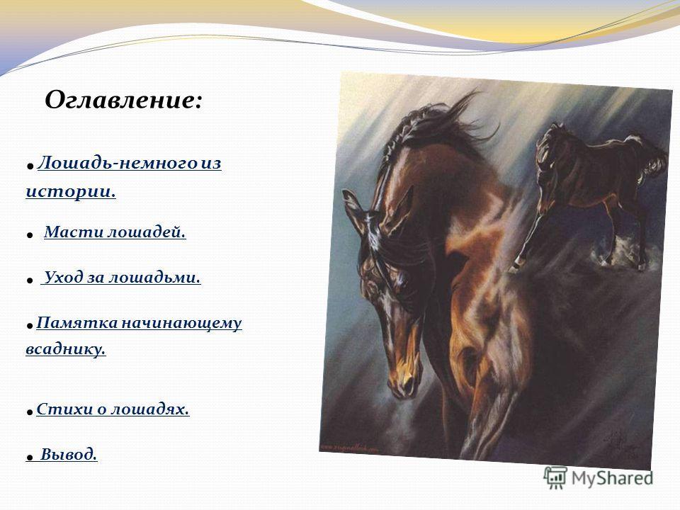 Презентация на тему лошадка