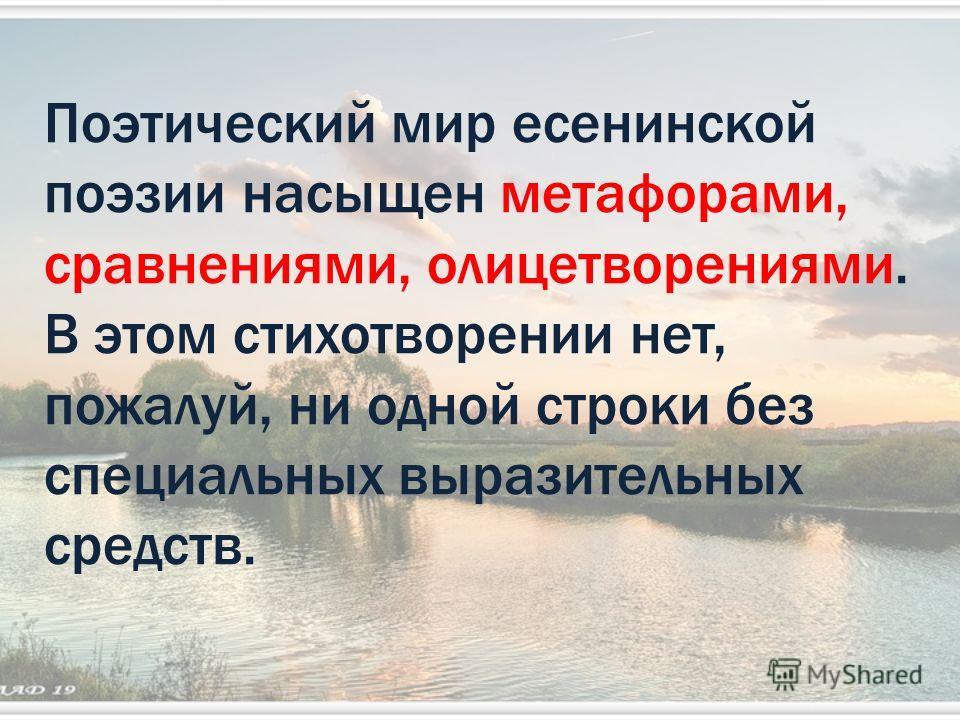 Поэтический мир есенинской поэзии насыщен метафорами, сравнениями, олицетворениями. В этом стихотворении нет, пожалуй, ни одной строки без специальных выразительных средств..