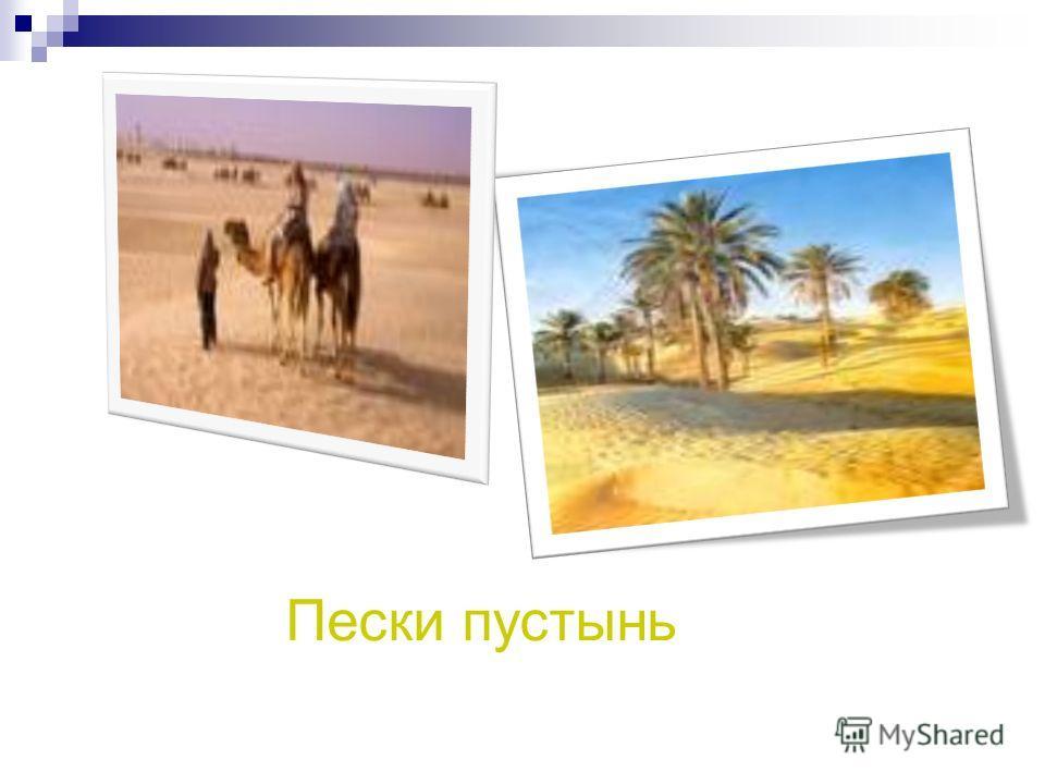 Пески пустынь