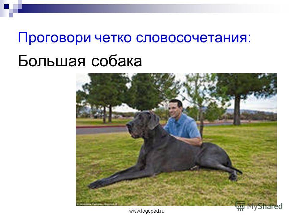 www.logoped.ru Проговори четко словосочетания: Большая собака