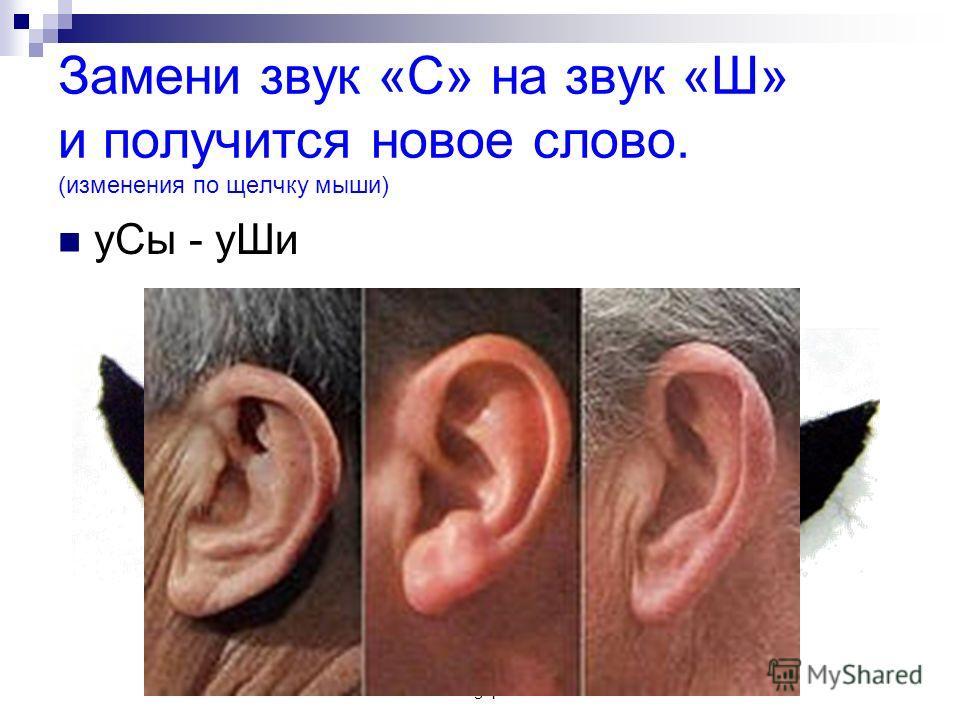 www.logoped.ru Замени звук «С» на звук «Ш» и получится новое слово. (изменения по щелчку мыши) уСы - уШи