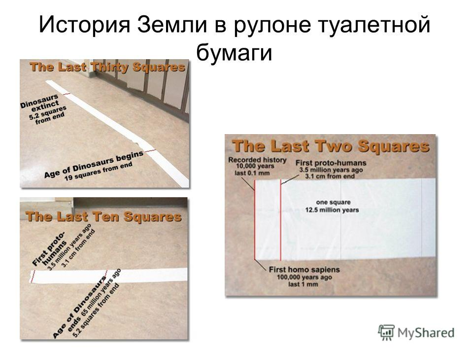 История Земли в рулоне туалетной бумаги