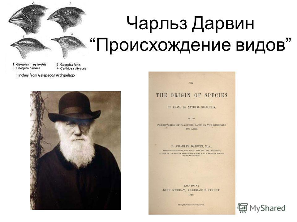 Чарльз Дарвин Происхождение видов