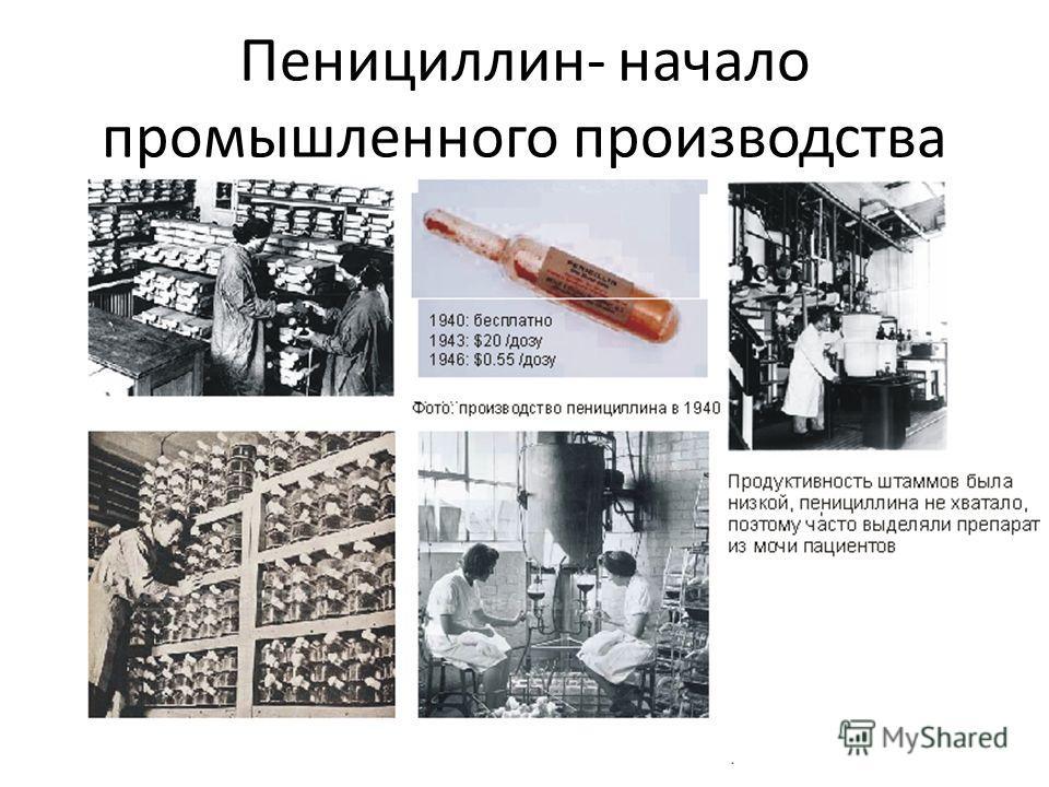 Пенициллин- начало промышленного производства