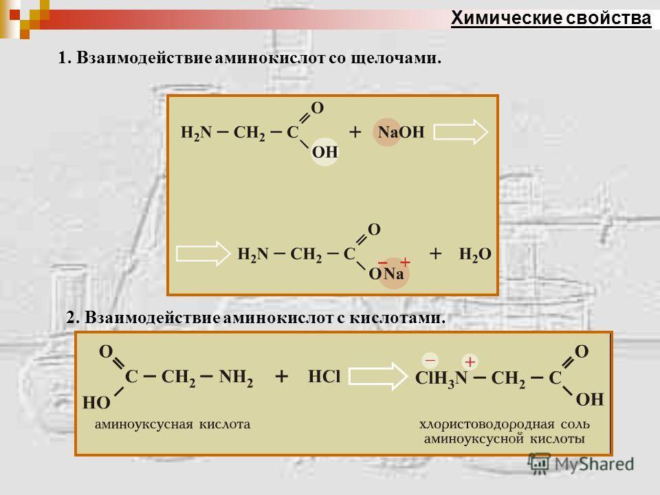 Химические свойства 1. Взаимодействие аминокислот со щелочами. 2. Взаимодействие аминокислот с кислотами.