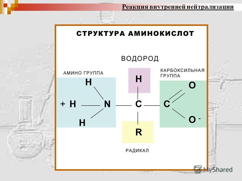 реакция нейтрализации токсина антитоксином примеры