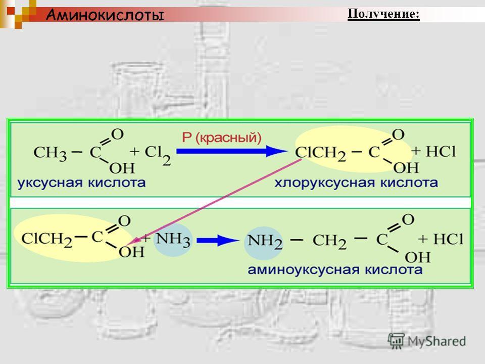 1. Гидролиз белков. Белок – полимер под действием воды распадается на мономеры - аминокислоты Аминокислоты Получение: