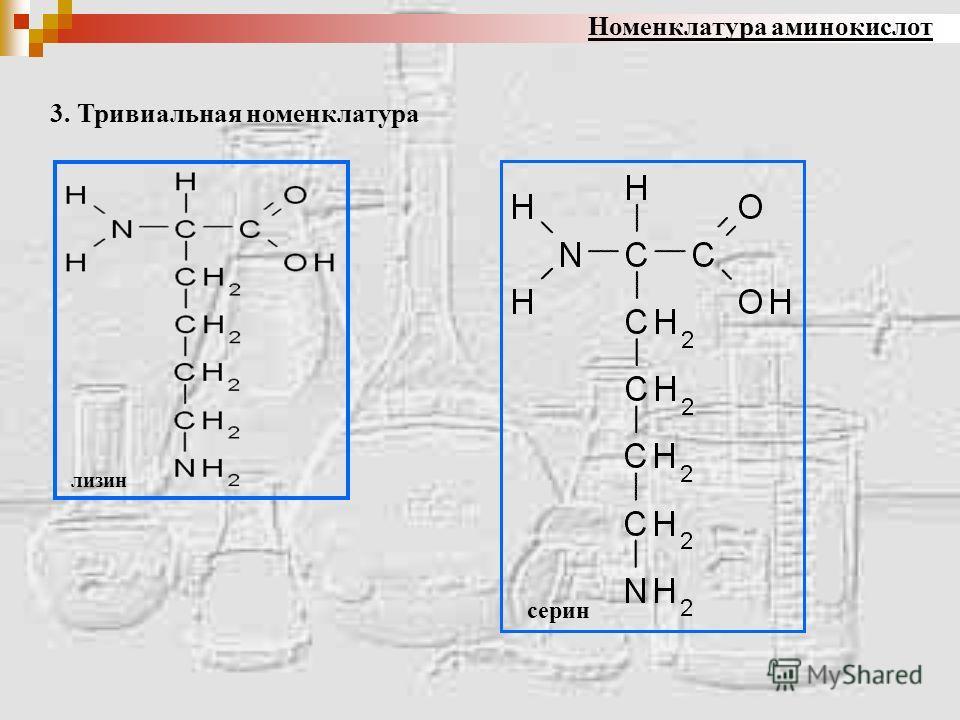 Номенклатура аминокислот лизин 3. Тривиальная номенклатура серин