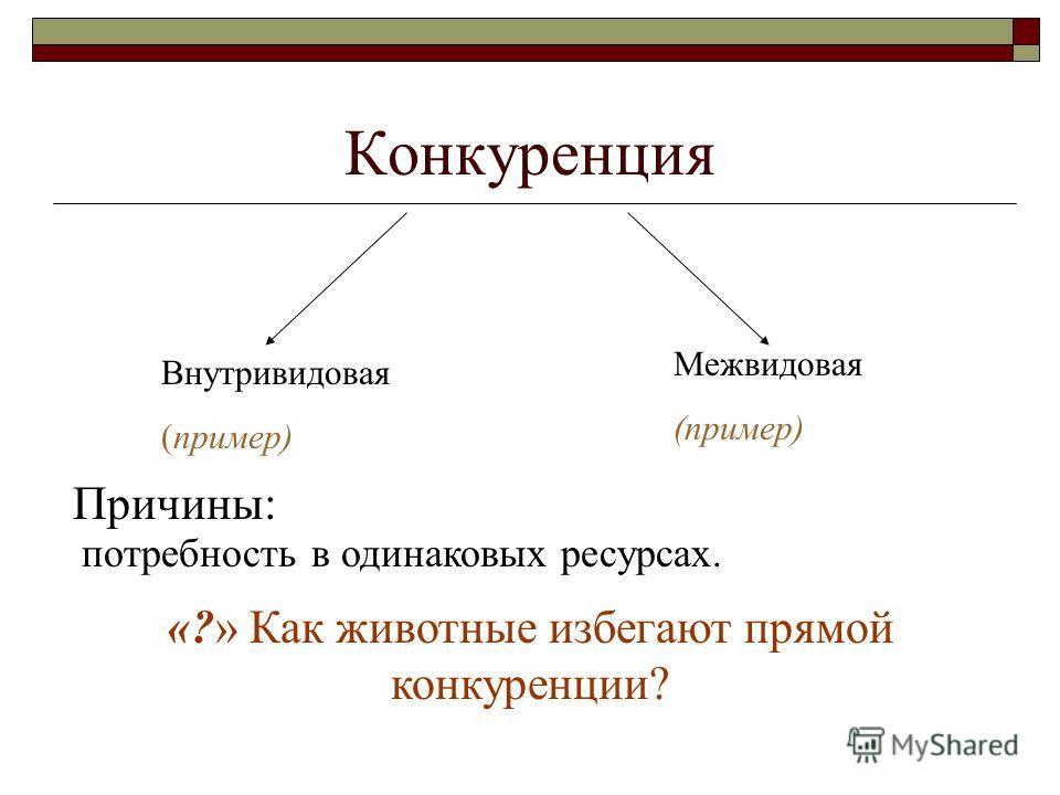Конкуренция Внутривидовая (пример) Межвидовая (пример) Причины: потребность в одинаковых ресурсах. «?» Как животные избегают прямой конкуренции?