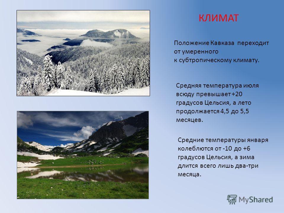 КЛИМАТ Положение Кавказа переходит от умеренного к субтропическому климату. Средняя температура июля всюду превышает +20 градусов Цельсия, а лето продолжается 4,5 до 5,5 месяцев. Средние температуры января колеблются от -10 до +6 градусов Цельсия, а