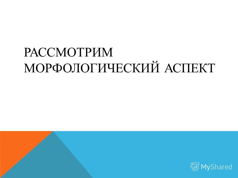 РАССМОТРИМ МОРФОЛОГИЧЕСКИЙ АСПЕКТ