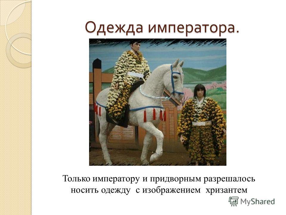 Одежда императора. Только императору и придворным разрешалось носить одежду с изображением хризантем