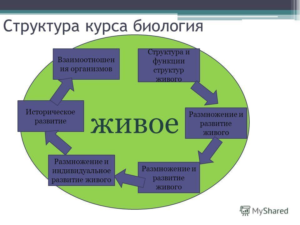 Структура курса биология живое Структура и функции структур живого Размножение и развитие живого Размножение и индивидуальное развитие живого Историческое развитие Взаимоотношен ия организмов