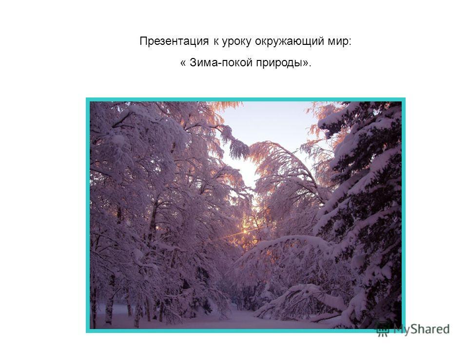 Презентация к уроку окружающий мир: « Зима-покой природы».
