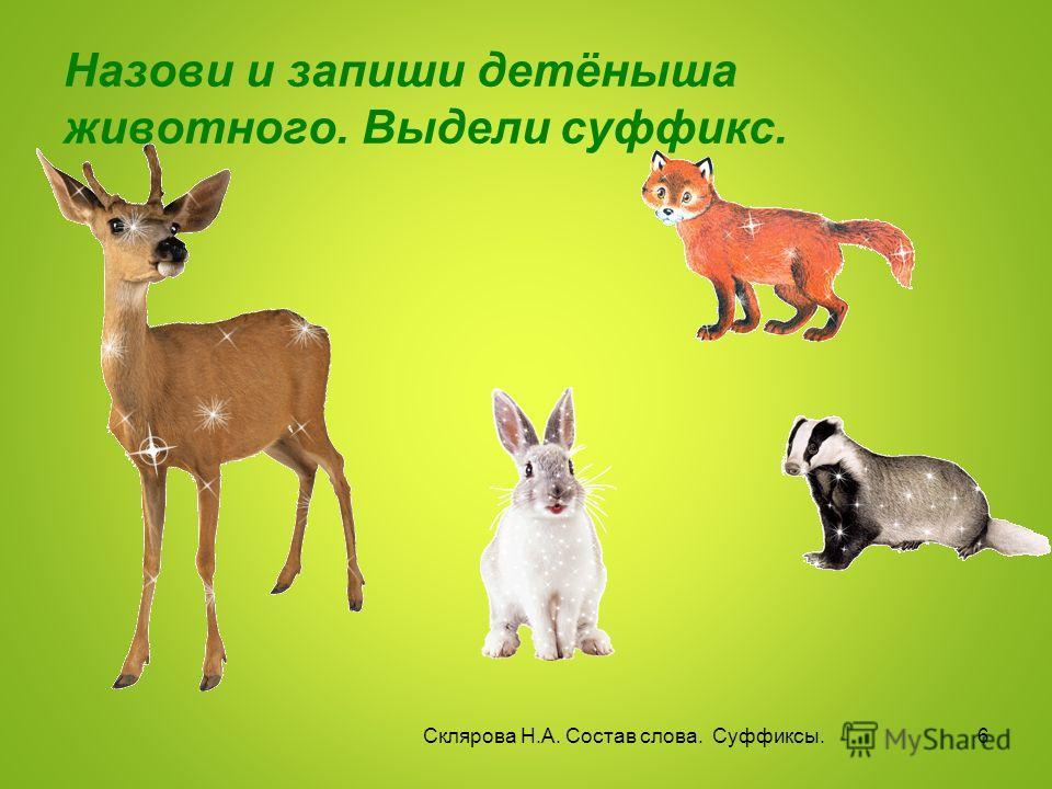 Назови и запиши детёныша животного. Выдели суффикс. Склярова Н.А. Состав слова. Суффиксы. 6