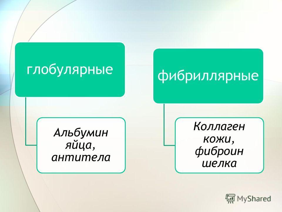 глобулярные Альбумин яйца, антитела фибриллярные Коллаген кожи, фиброин шелка