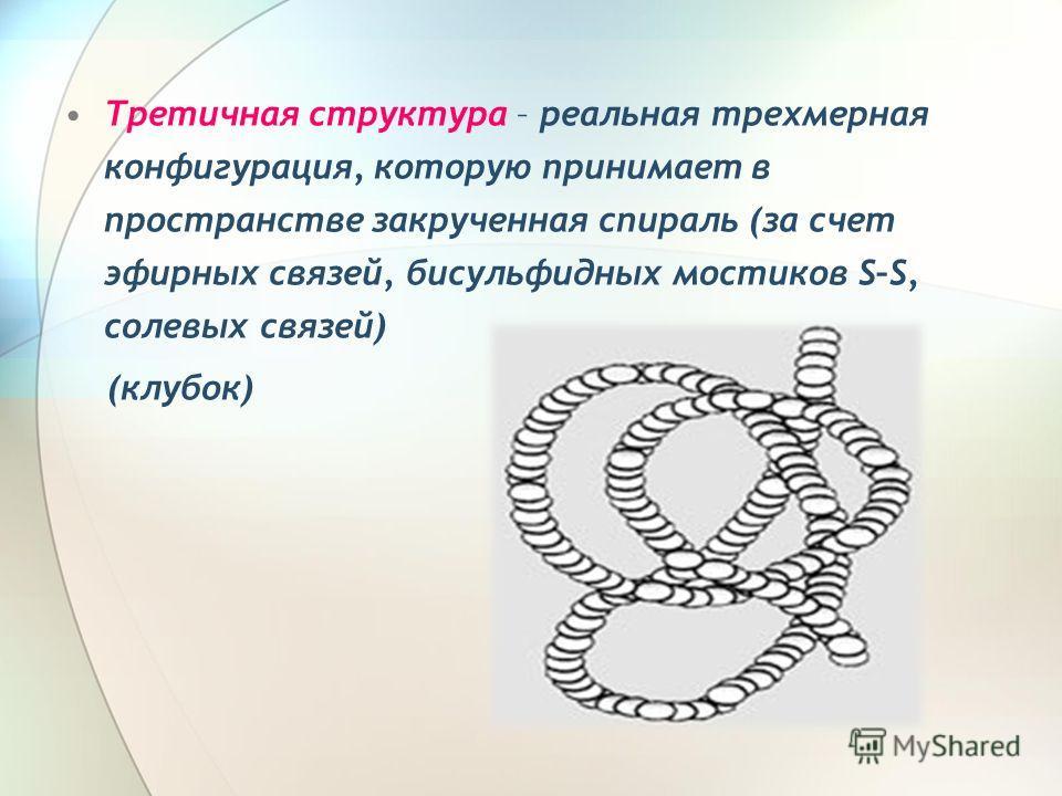 Третичная структура – реальная трехмерная конфигурация, которую принимает в пространстве закрученная спираль (за счет эфирных связей, бисульфидных мостиков S–S, солевых связей) (клубок)