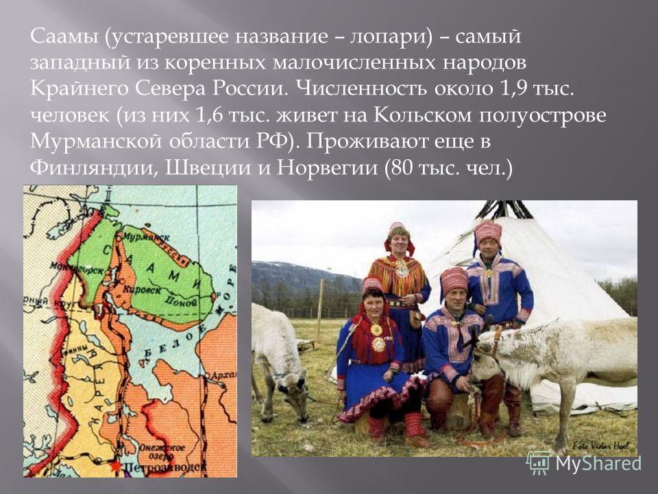 Саамы (устаревшее название – лопари) – самый западный из коренных малочисленных народов Крайнего Севера России. Численность около 1,9 тыс. человек (из них 1,6 тыс. живет на Кольском полуострове Мурманской области РФ). Проживают еще в Финляндии, Швеци