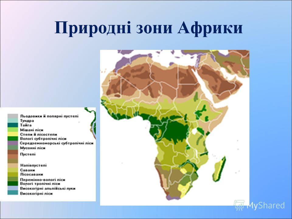 Природні зони Африки Які природні зони світу ви знаєте ?