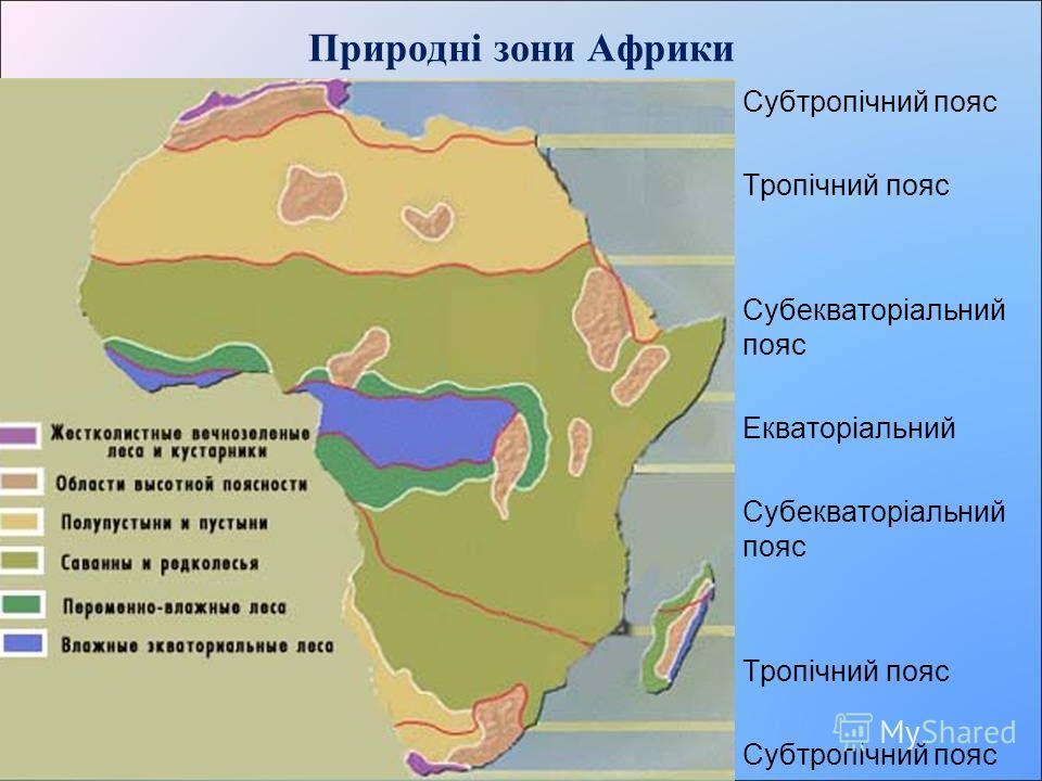 План вивчення природної зони Географічне положення Клімат Ґрунти Рослинний світ Тваринний світ