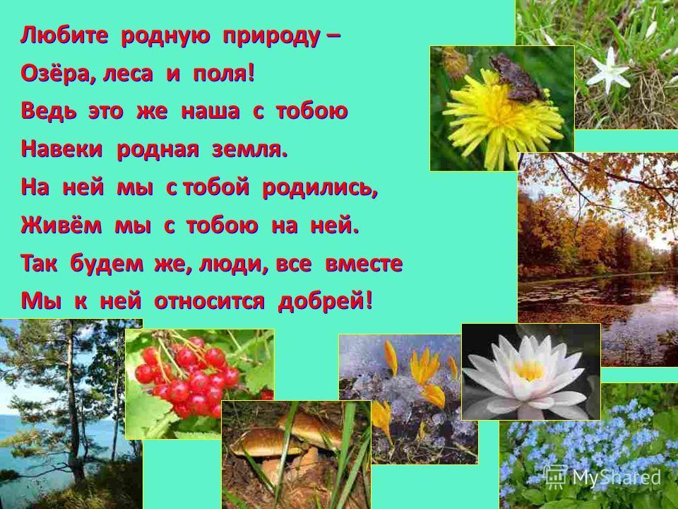 Любите родную природу – Озёра, леса и поля! Ведь это же наша с тобою Навеки родная земля. На ней мы с тобой родились, Живём мы с тобою на ней. Так будем же, люди, все вместе Мы к ней относится добрей! Любите родную природу – Озёра, леса и поля! Ведь