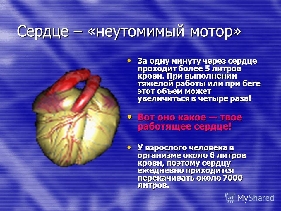 Сердце – «неутомимый мотор» За одну минуту через сердце проходит более 5 литров крови. При выполнении тяжелой работы или при беге этот объем может увеличиться в четыре раза! За одну минуту через сердце проходит более 5 литров крови. При выполнении тя