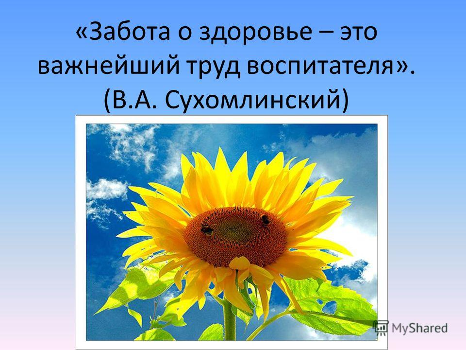 «Забота о здоровье – это важнейший труд воспитателя». (В.А. Сухомлинский)