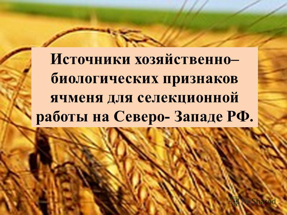 Источники хозяйственно– биологических признаков ячменя для селекционной работы на Северо- Западе РФ.