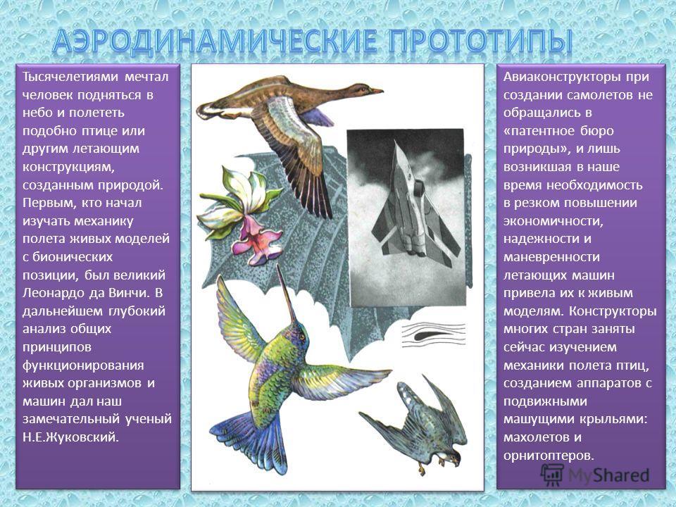 Тысячелетиями мечтал человек подняться в небо и полететь подобно птице или другим летающим конструкциям, созданным природой. Первым, кто начал изучать механику полета живых моделей с бионических позиции, был великий Леонардо да Винчи. В дальнейшем гл
