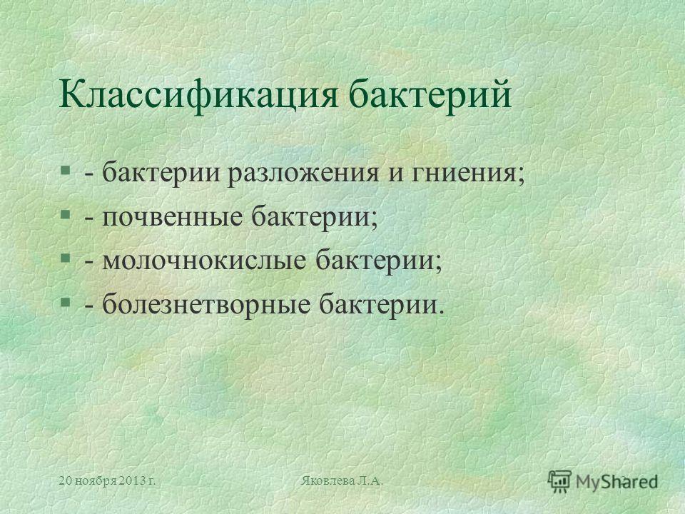 20 ноября 2013 г.Яковлева Л.А.2 Классификация бактерий §- бактерии разложения и гниения; §- почвенные бактерии; §- молочнокислые бактерии; §- болезнетворные бактерии.