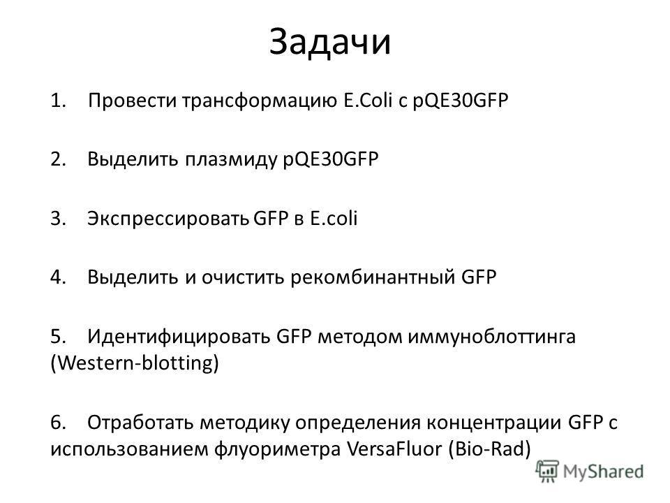 Задачи 1.Провести трансформацию E.Coli с pQE30GFP 2. Выделить плазмиду pQE30GFP 3. Экспрессировать GFP в E.coli 4. Выделить и очистить рекомбинантный GFP 5. Идентифицировать GFP методом иммуноблоттинга (Western-blotting) 6. Отработать методику опреде