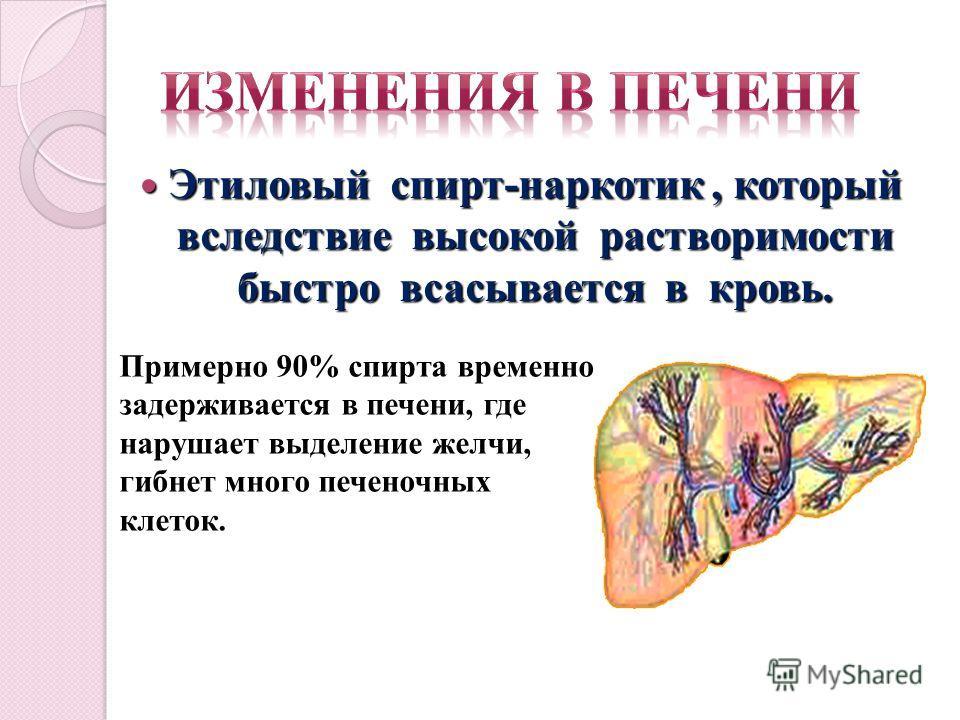 Этиловый спирт-наркотик, который вследствие высокой растворимости быстро всасывается в кровь. Этиловый спирт-наркотик, который вследствие высокой растворимости быстро всасывается в кровь. Примерно 90% спирта временно задерживается в печени, где наруш