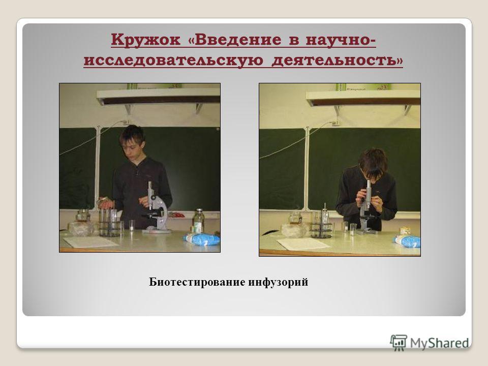 Кружок «Введение в научно- исследовательскую деятельность» Биотестирование инфузорий