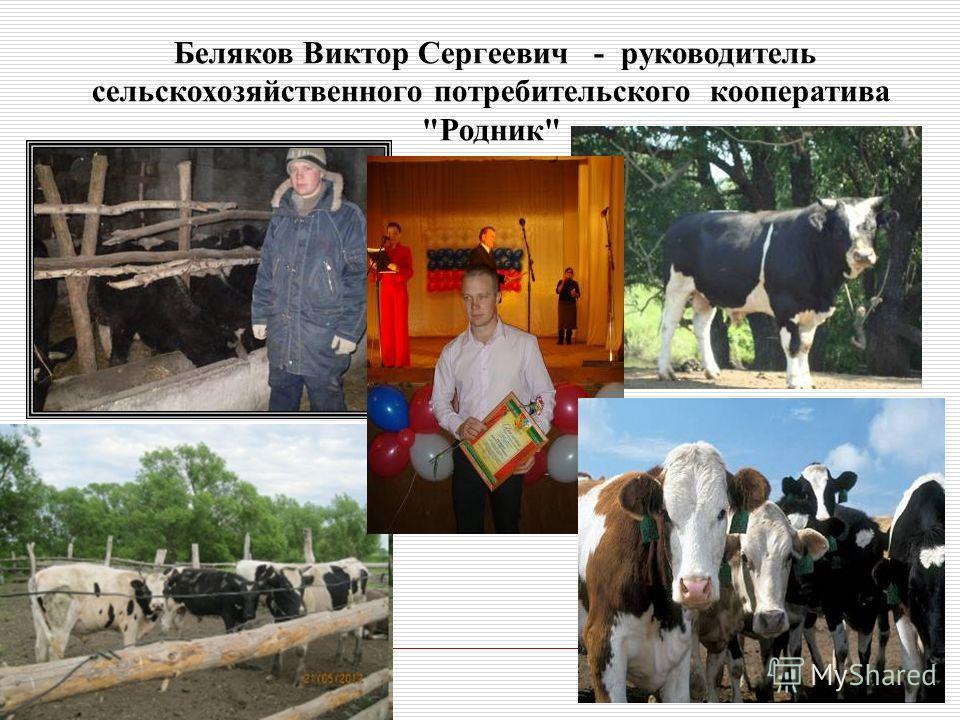 Беляков Виктор Сергеевич - руководитель cельскохозяйственного потребительского кооператива Родник