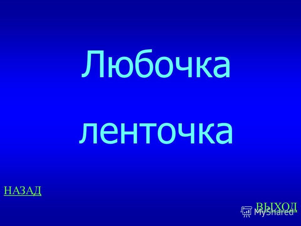 СОСТАВ СЛОВА 400 Назови слова с суффиксом- ОЧК Любочка, бабочка, ленточка, белочка ответ