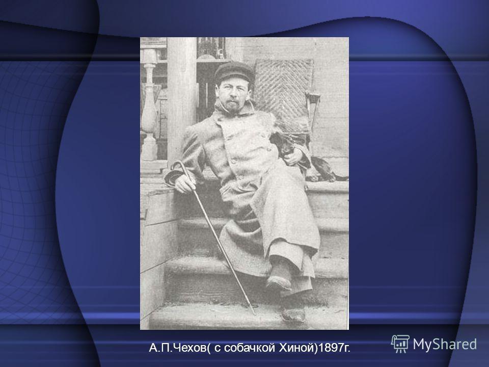 А.П.Чехов( с собачкой Хиной)1897г.