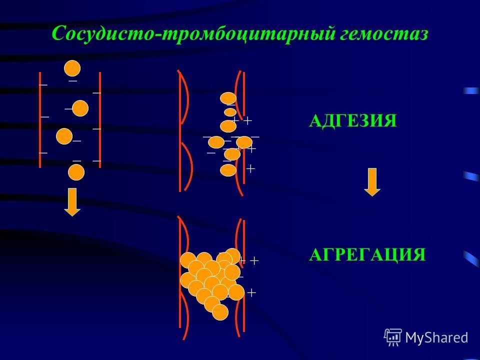 Сосудисто-тромбоцитарный гемостаз АДГЕЗИЯ АГРЕГАЦИЯ + _ _ _ _ _ _ _ _ _ _ _ _ _ _ _ _ _ _ __ _ _ _ _ _ _ _ _ _ ___ +