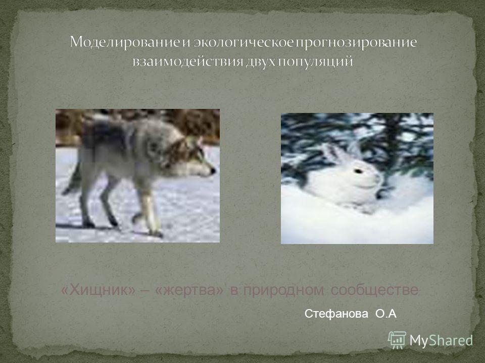 «Хищник» – «жертва» в природном сообществе Стефанова О.А